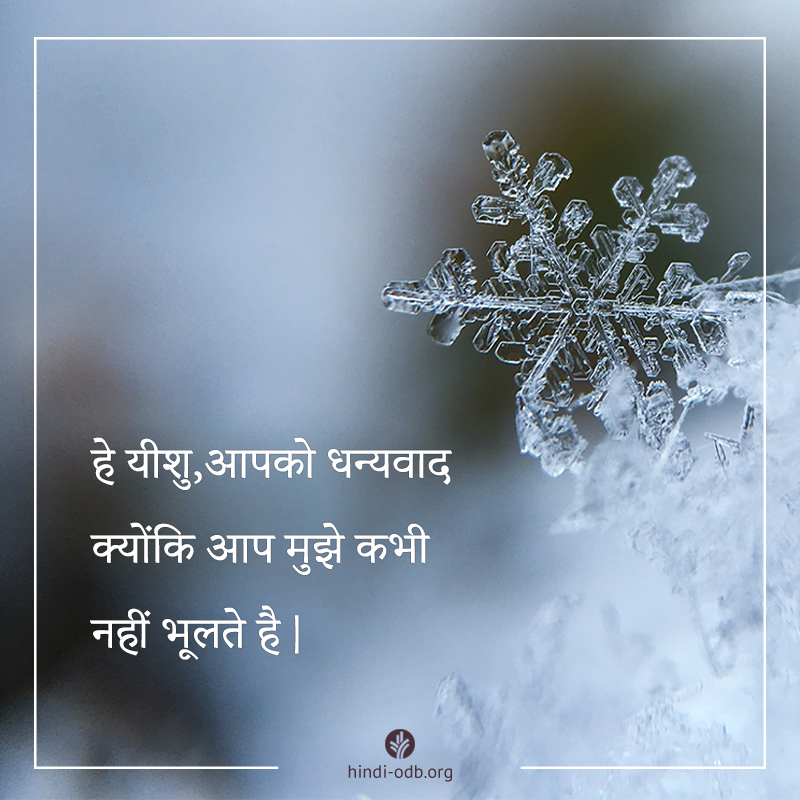 Share Hindi ODB 2019-12-28