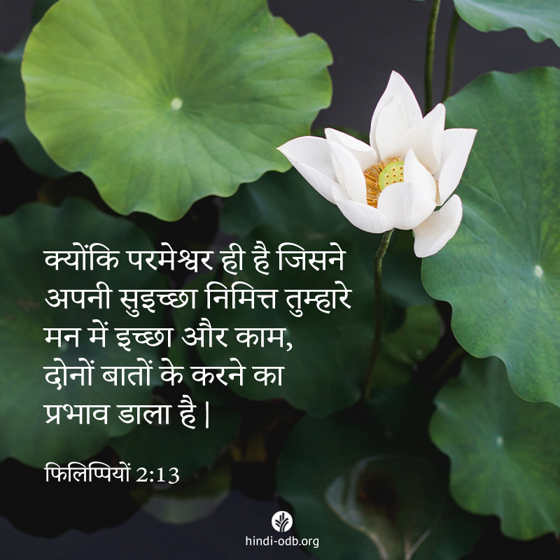 Share Hindi ODB 2020-05-31
