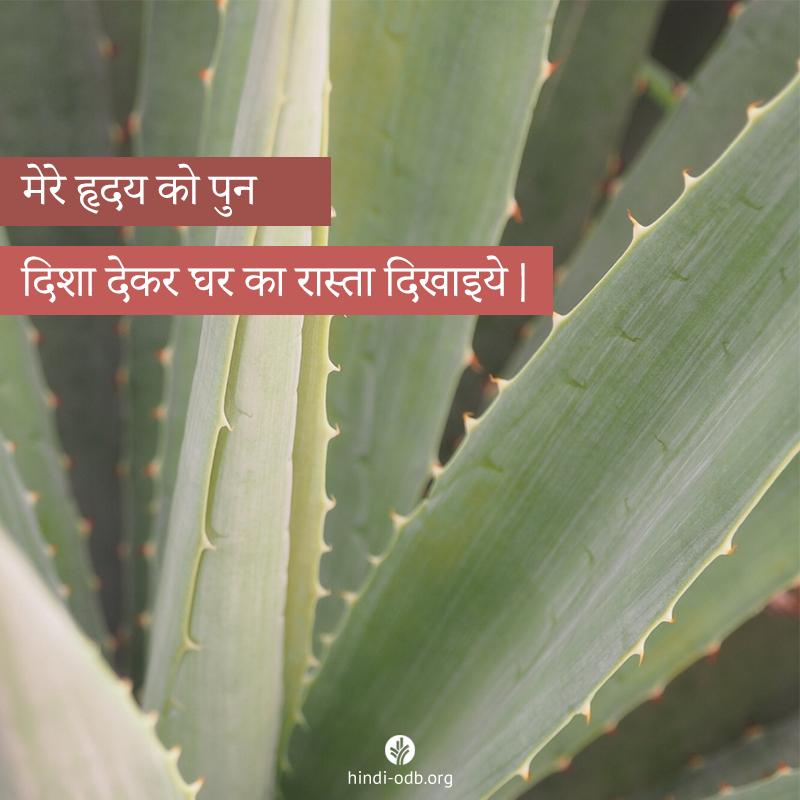 Share Hindi ODB 2020-09-27