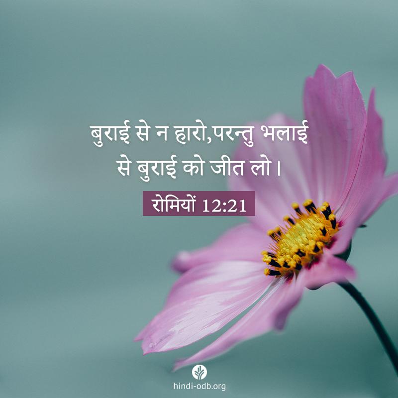 Share Hindi ODB 2021-01-31