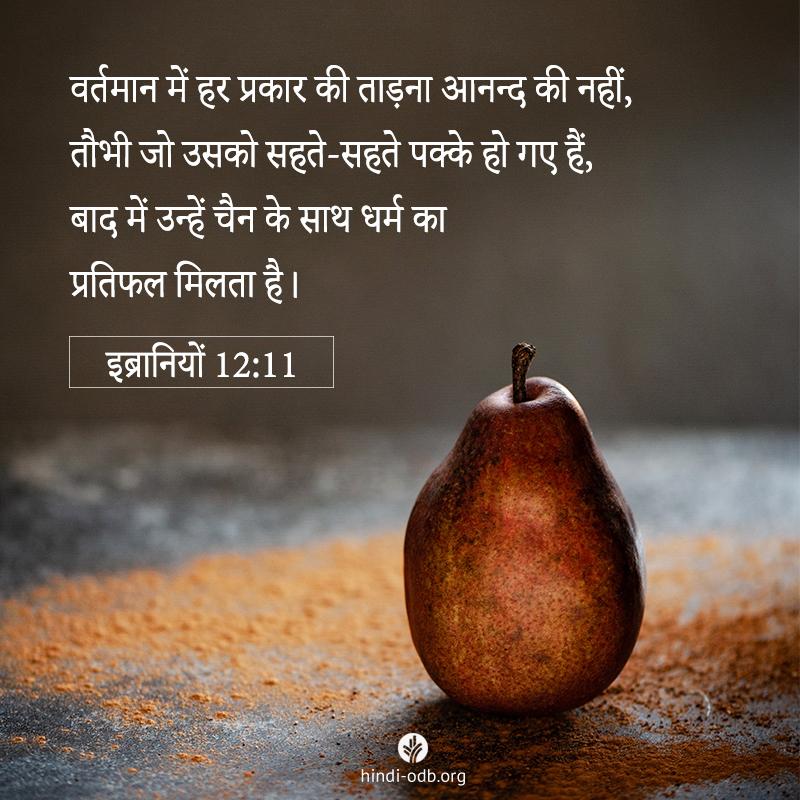 Share Hindi ODB 2021-04-27