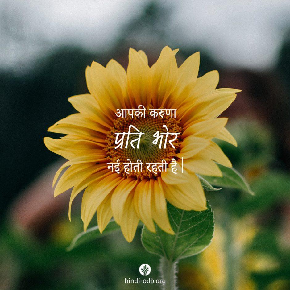 Share Hindi ODB 2021-08-30